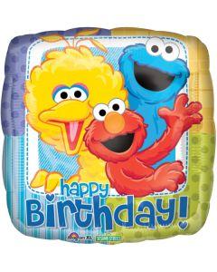 """18"""" Sesame St Birthday"""