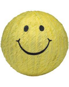 Smiley Face Piñata