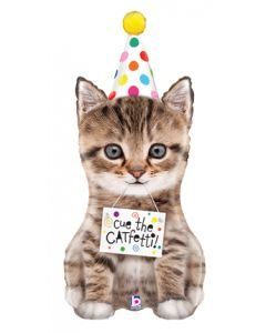 """41"""" Cue The Catfetti"""