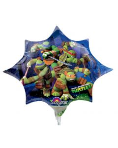"14"" Teenage Mutant Ninja Turtle"