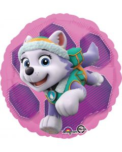 "18"" Paw Patrol Skye & Everest"