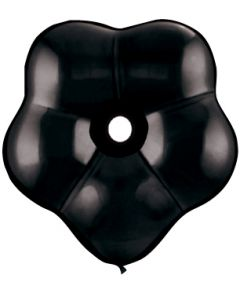 "6"" Black Blossoms 50ct"