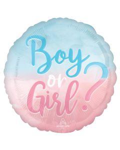 """18"""" Boy? or Girl? Pkg"""