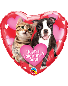 "18"" Valentine Pets"
