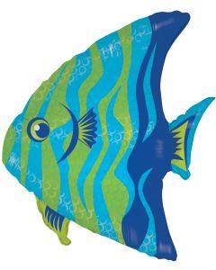 """28"""" Angel Fish"""