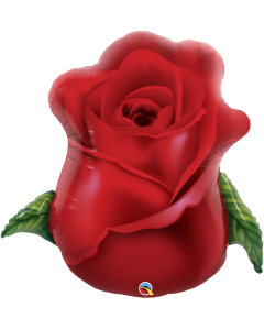 "33"" Red Rose Bud"