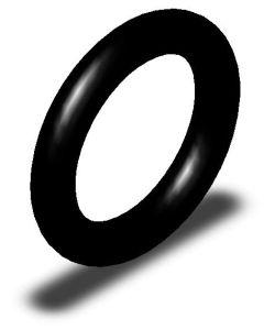 Regulator O Ring